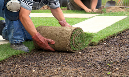 Laying A Turf Lawn